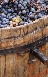 Smaakvolle wijnen
